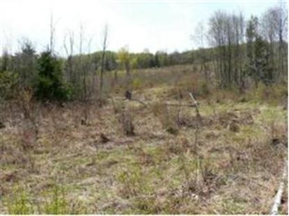 Lot 1 Back Coventry Rd, Irasburg, VT