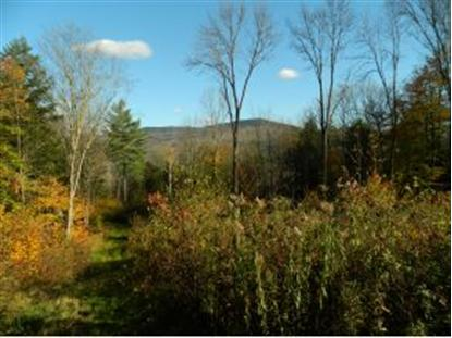 Lot #3 Stony Farm Road, Fayston, VT
