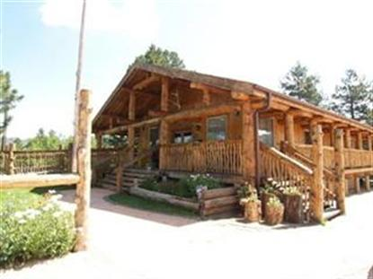 8720 S SPRUCE MOUNTAIN RD, Larkspur, CO