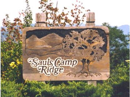 Lot 12 Saul's Camp Ridge