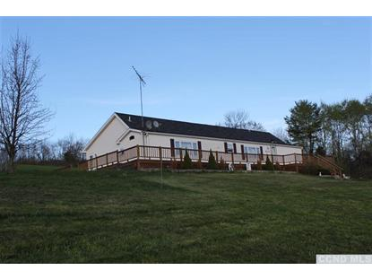 4776 County Road 67, East Durham, NY 12423