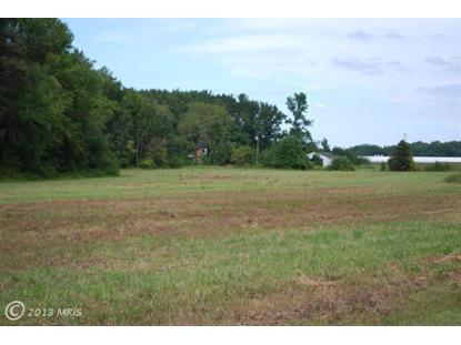 25804 LOT 2 SHULTS RD, Henderson, MD