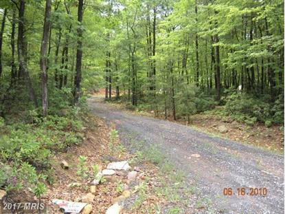 LOT 13 GREAT MOUNTAIN LN, Winchester, VA