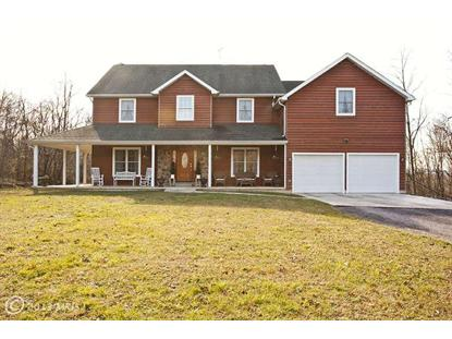 176 HORSESHOE CT, Winchester, VA