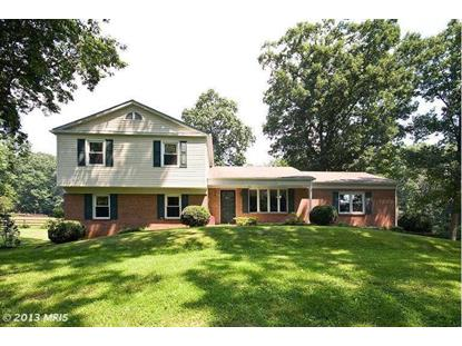 256 DUTCH APPLE DR, Winchester, VA