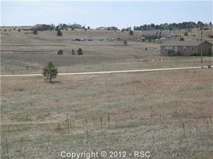 16865  WARRIORS PATH DR, Peyton, CO