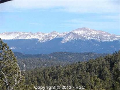 2610  County 411 RD, Divide, CO