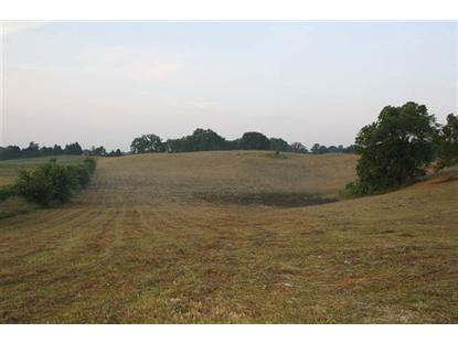 Lot 4 Alvaton-Greenhill Road