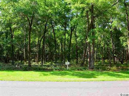 Lot 19 Rice Bluff Road