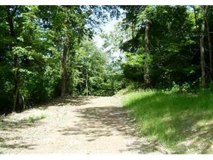 Woodlands Trail Lot 11