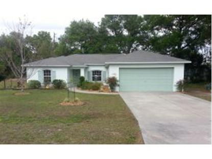 789 NE 130th Ct, Silver Springs, FL 34488