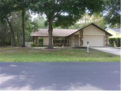 1112 NE 130th Ter, Silver Springs, FL 34488