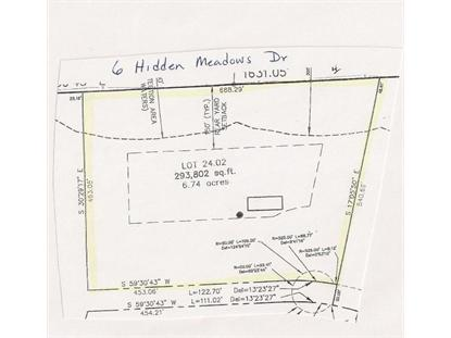 6 Hidden Meadow Dr