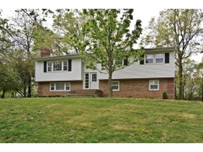 9 Beaumont Pl, Whippany, NJ 07981