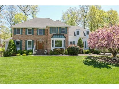 20 Summit Dr, Basking Ridge, NJ 07920
